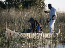 Looking for frogs on Mokorro
