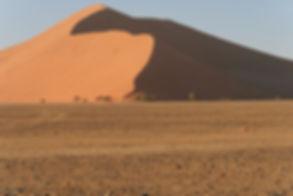 Big Daddy Dune_edited.jpg