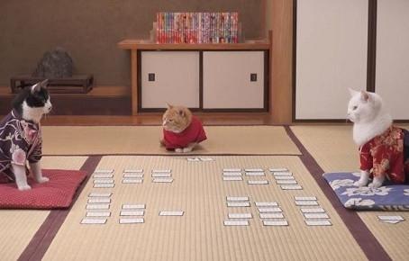 PR動画『ちはにゃふる -猫の句-』がYouTubeで40万再生突破しました