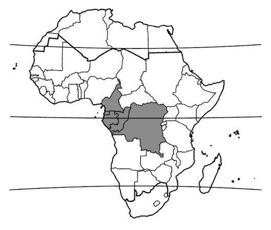 Beli Tree Distribution Map