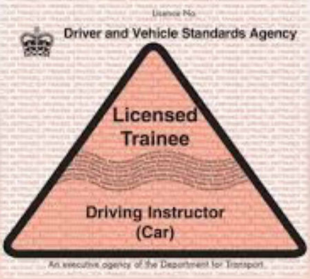 Trainee Driving Instructor's Licence