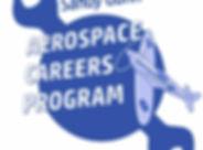 ACP logo_edited.jpg