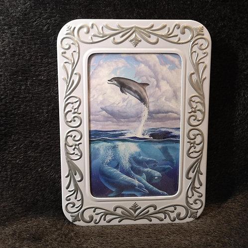Dolphin Moon Notecard Tin