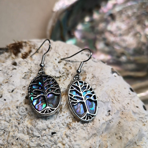 Paua Shell Oval Tree Earrings