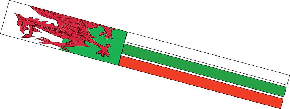 Welsh Windsock