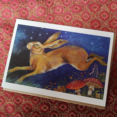 'Starlit Hare'