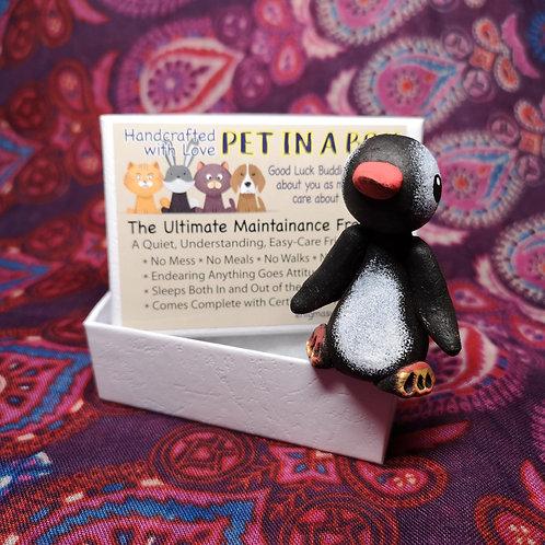 Penguin Pet in a Box
