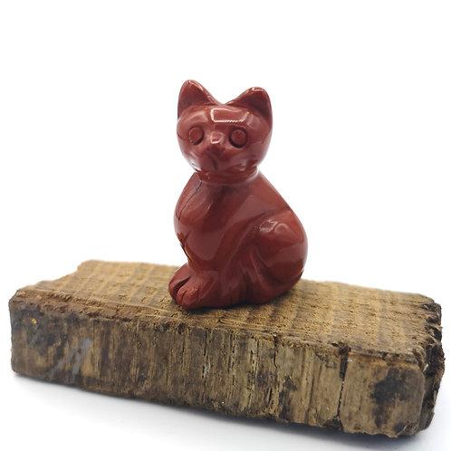 Jasper Cat