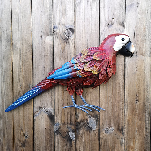 Macy the Macaw Metal Wall Plaque