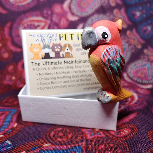 Parrot Pet in a Box