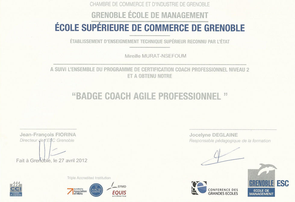 Certification coaching d'équipe