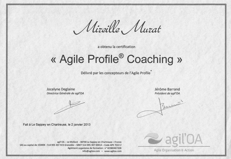 Coaching Agile Profile
