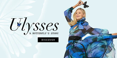 Ulysses Launch.jpg
