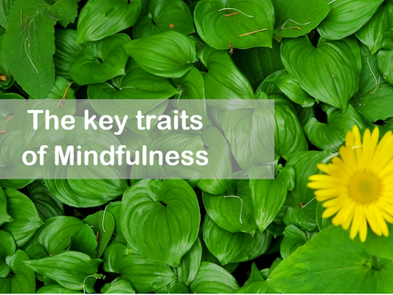 The litmus test for mindfulness
