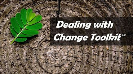 Deaing with Change Toolkit, change managemen and mindfulness