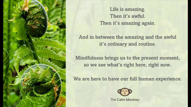 'Life is amazing' - or is it.