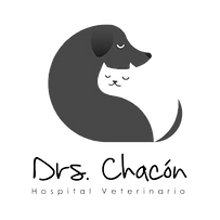 Logo Drs Chacon copy.png