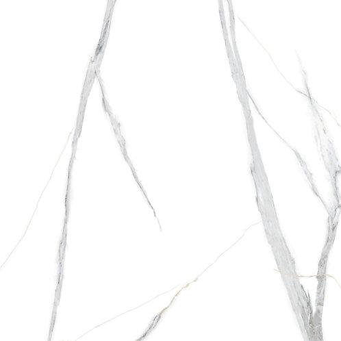 TH13019