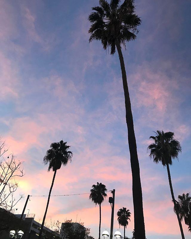 I Left My HEART in LA