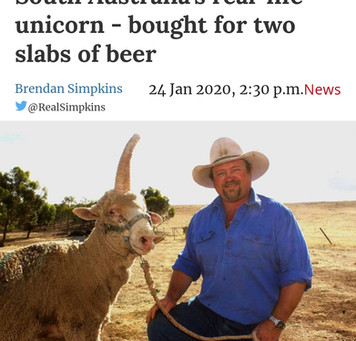 South Australia's real-life unicorn - bought for two slabs of beer