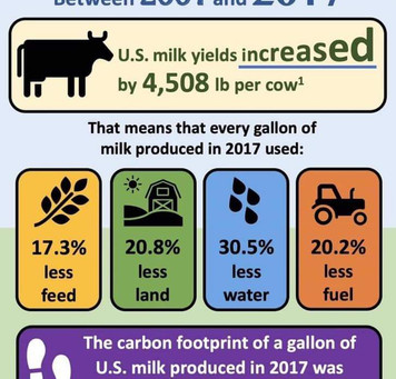More milk yield and less environmental impact in U.S. Dairy