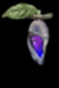 mariposa-ciclo-2.png