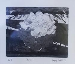 Zeynep Şahin 20x26cm kağıt gravür