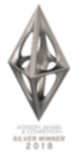 Silver A Design Award.png
