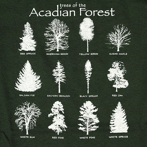 Trees of the Acadian Forest