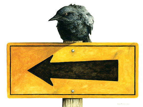 Crow on the Sign