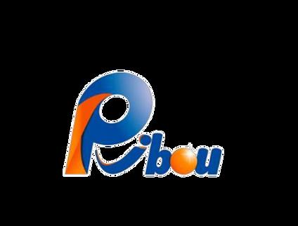 Pibou_edited.png