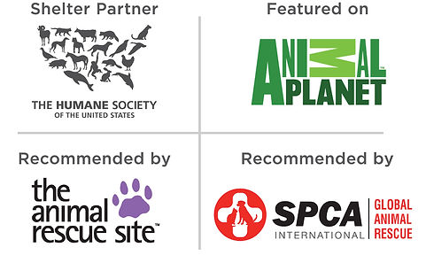 Several of the advocate organizations who support the Pet Emergency Tag; The Humane Society, SPCA International, Animal Planet and the Animal Rescue Site