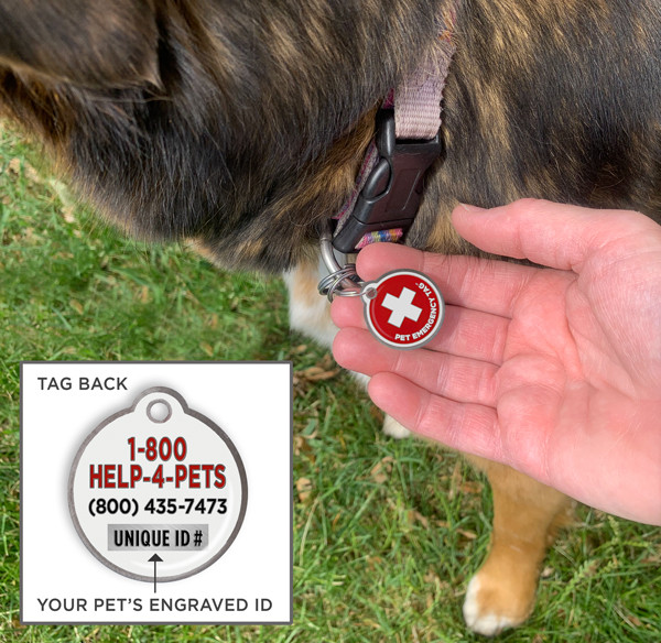 Person's hand holding the Pet Emergency Tag on a lost dog's collar with inset photo of the toll free number and unique ID number on the back of the tag.