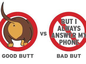 3 Myths Pet Parents Tell Themselves