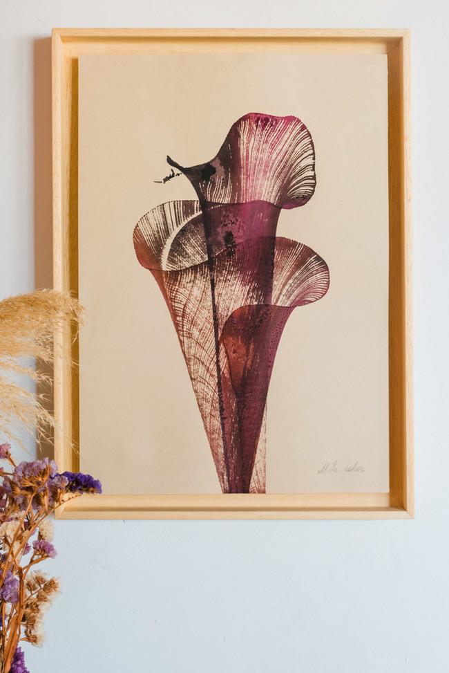 """""""Wabi Sabi"""" ink on paper n.5 framed"""