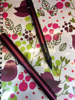 purple and pink LAMY pen and notebook.jp