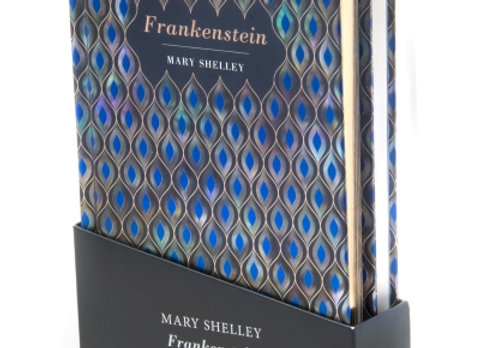 Frankenstein novel and matching notebook box set