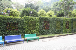 Macau Schools