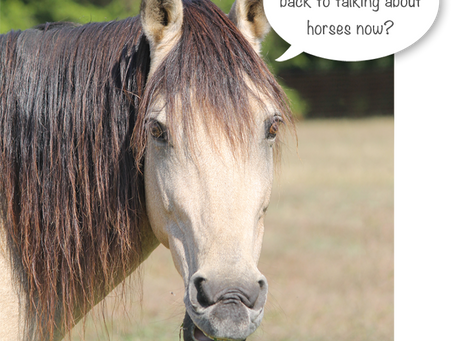 Is this still a horse color blog?