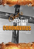 God's Response to the Coronavirus Book C