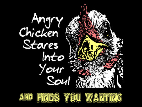 Angry Chicken Stares Into Your Soul