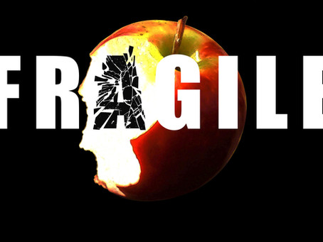 Portfolio: Life's Very Fragile