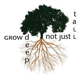 Grow deep, not just tall. Cork oak tree and roots
