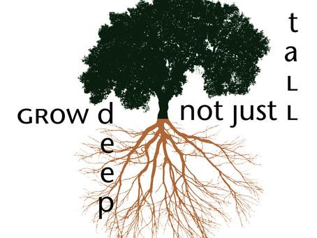 Portfolio: Grow Deep, Not Just Tall