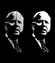 Joe Biden - Driftwood - stencil, screen print style - Groot - Public Domain