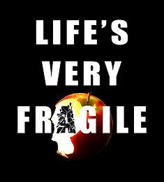 lifes very fragile2-m.jpg