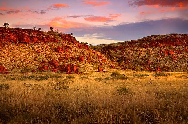 Pilbara Landscape.jpg