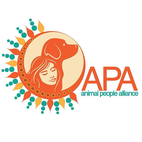 APA Logo .jpg