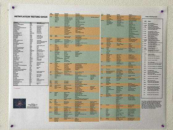 Large Supplement Guide Wall Chart