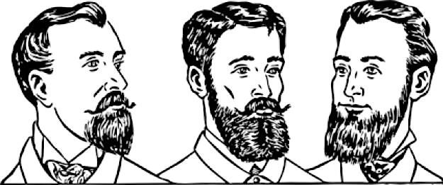 Barba minoxidil
